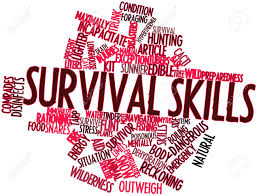 key survival skills for city dwellers